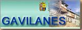 Página web oficial de Gavilanes